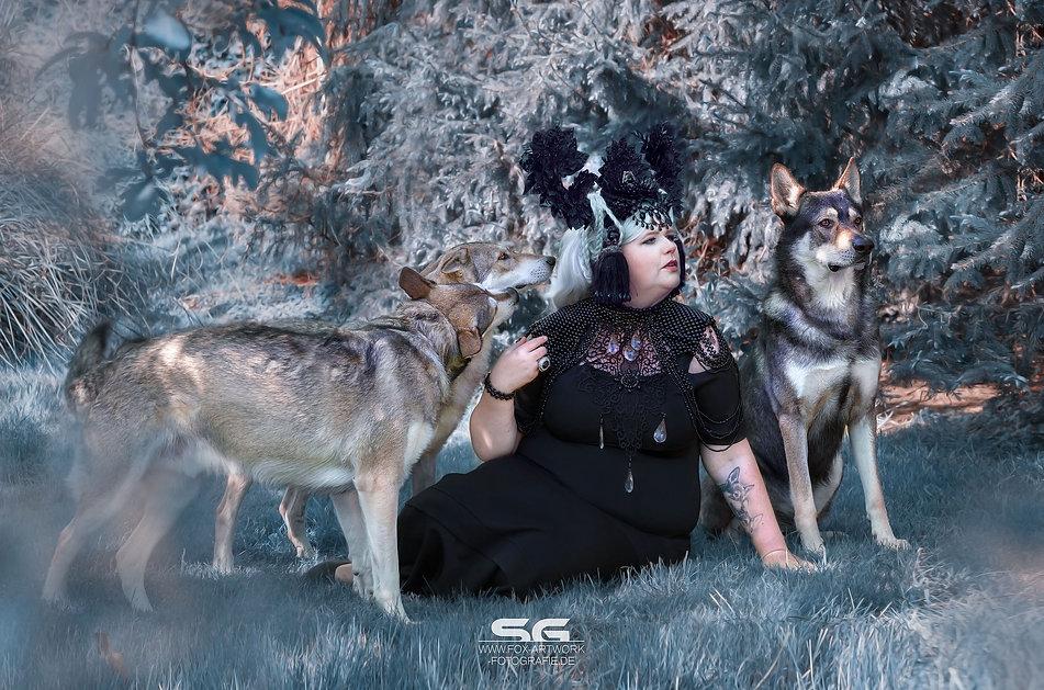 fox_artwork_fotografie_hamm_wolfshooting