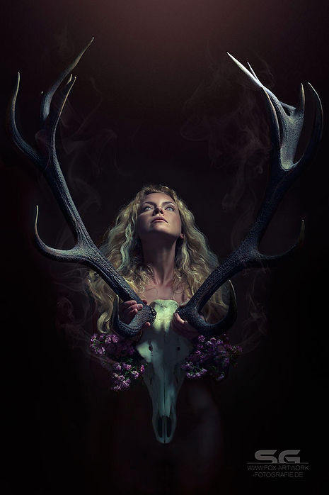 fox-artwork-fotografie_fantasy_dark_art_