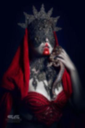 fox_artwork_fotografie_darkbeauty_blindm