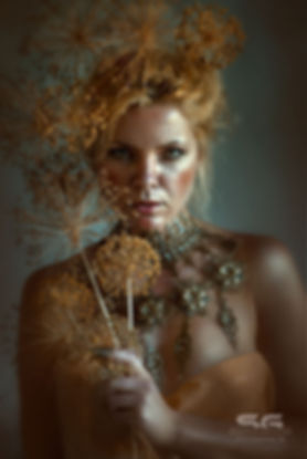 fox_artwork_fotografie_fantasy_darkbeaut