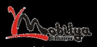 Şile Yılmaz Mobilya Logo