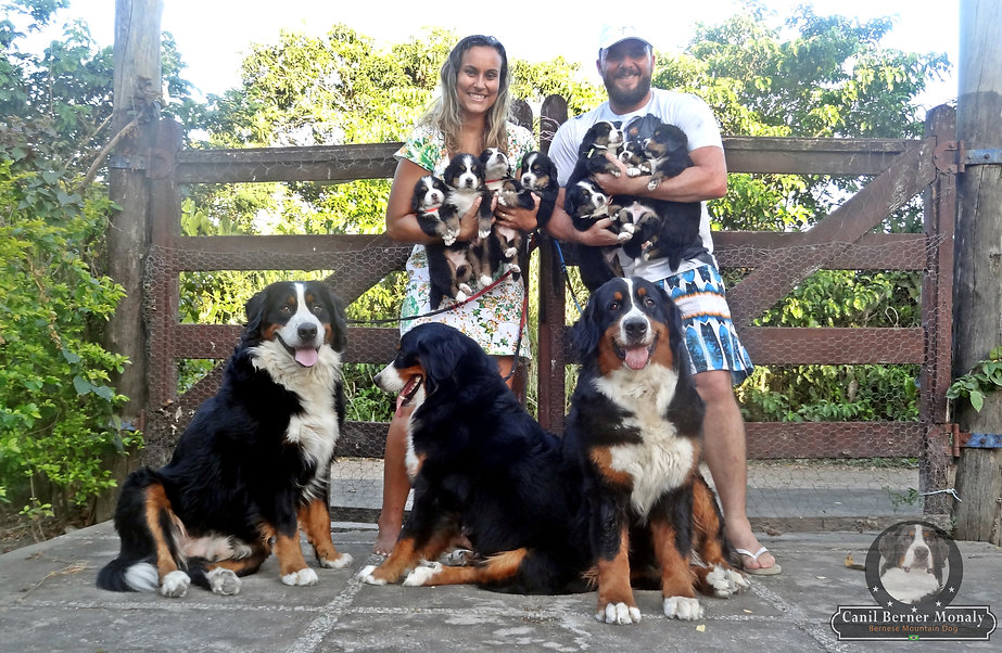 Familia Berner Monaly