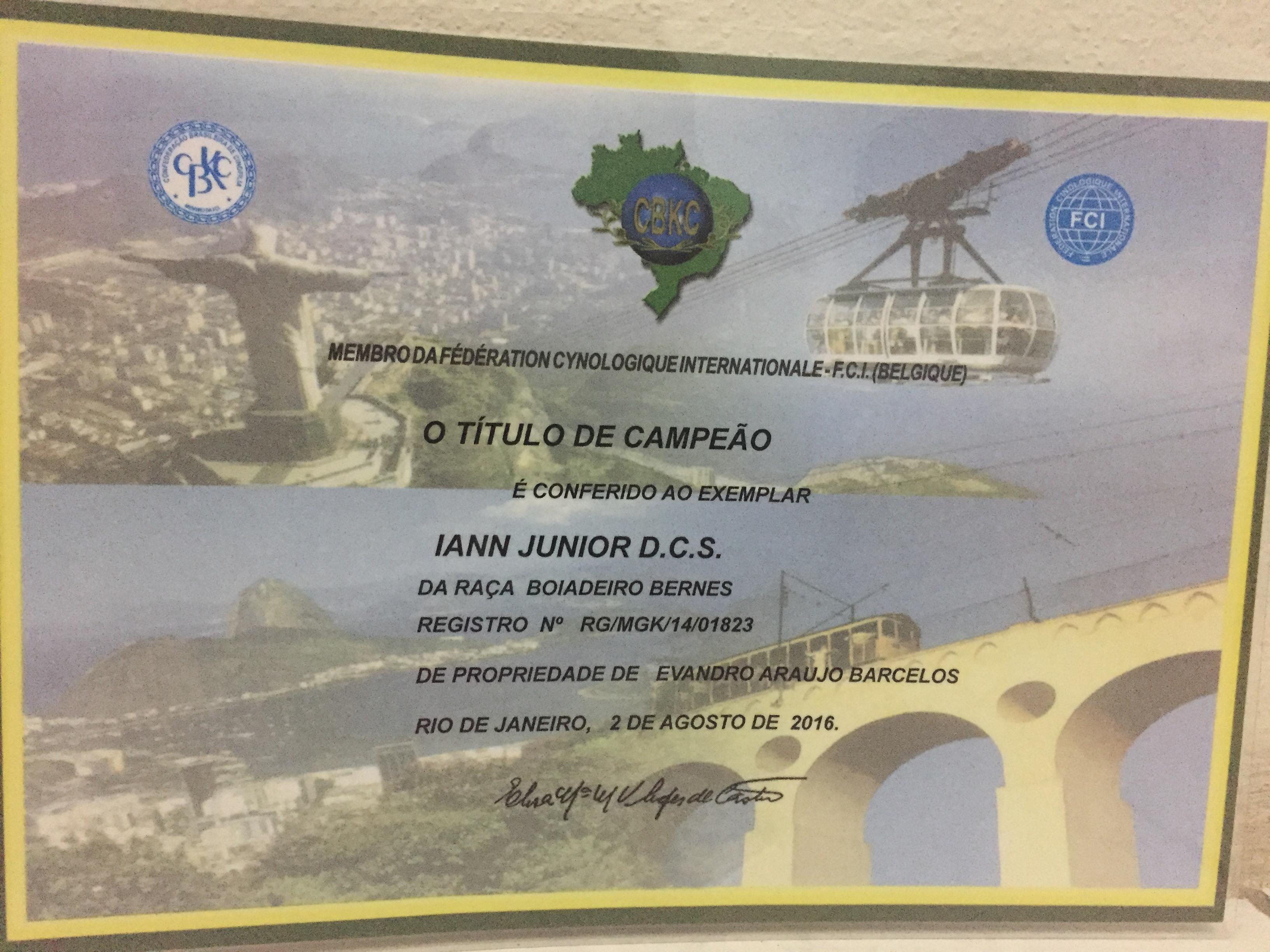 Título Campeão Brasileiro