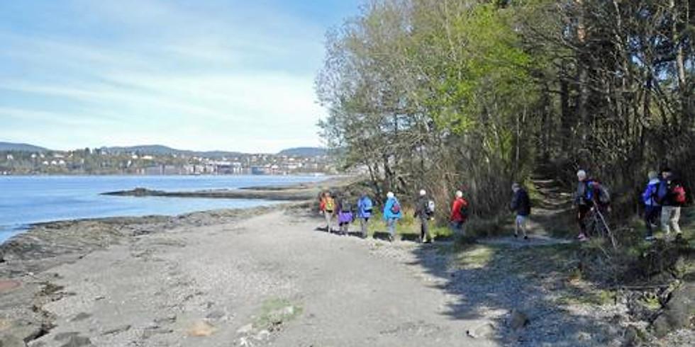 Tur med DNT Oslo (26-45 år)