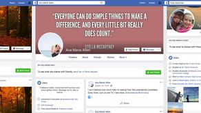 Facebook Facilitating Republican Hitjobs on Democratic Groups