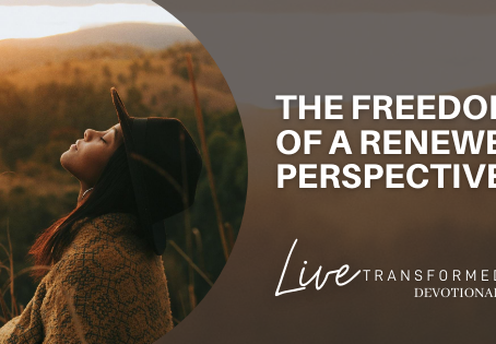 The Freedom of A Renewed Perspective