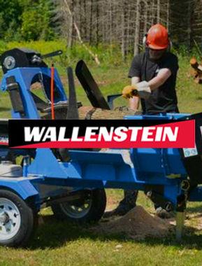wallenstein_accueil.jpg