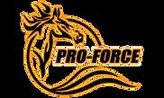 pro-force-logo_sansoutline.png