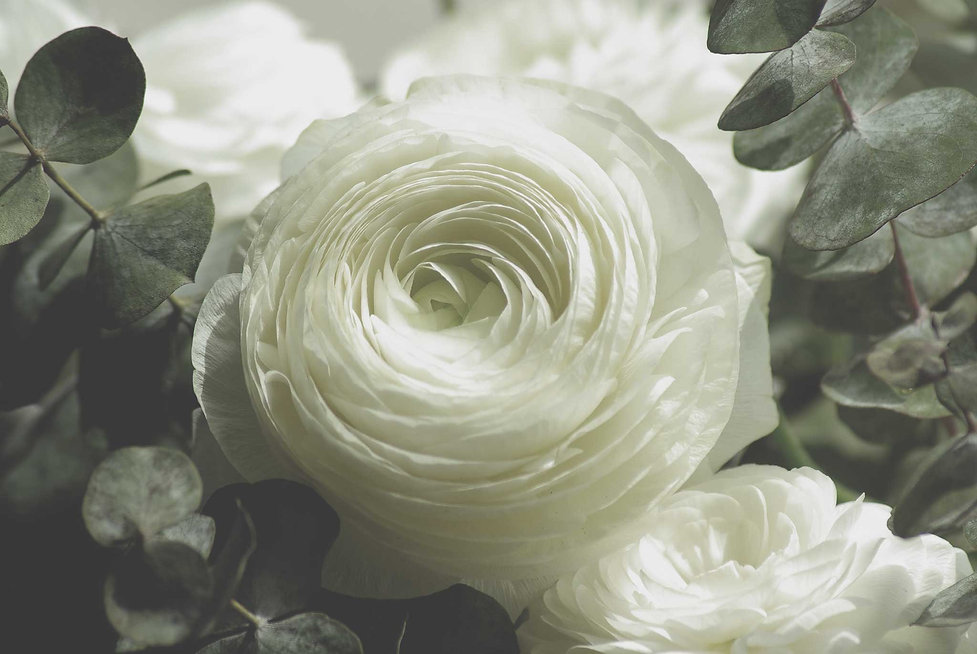 flowers-728811-psd.jpg
