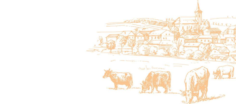histoire_village.jpg