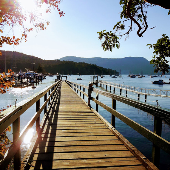 Saanich Inlet @ Brentwood Bay