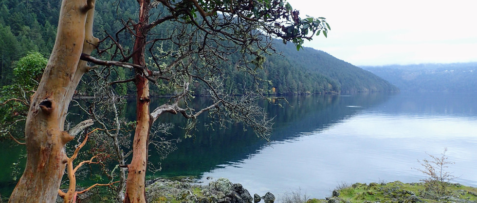 Saanich Inlet on hiking tour