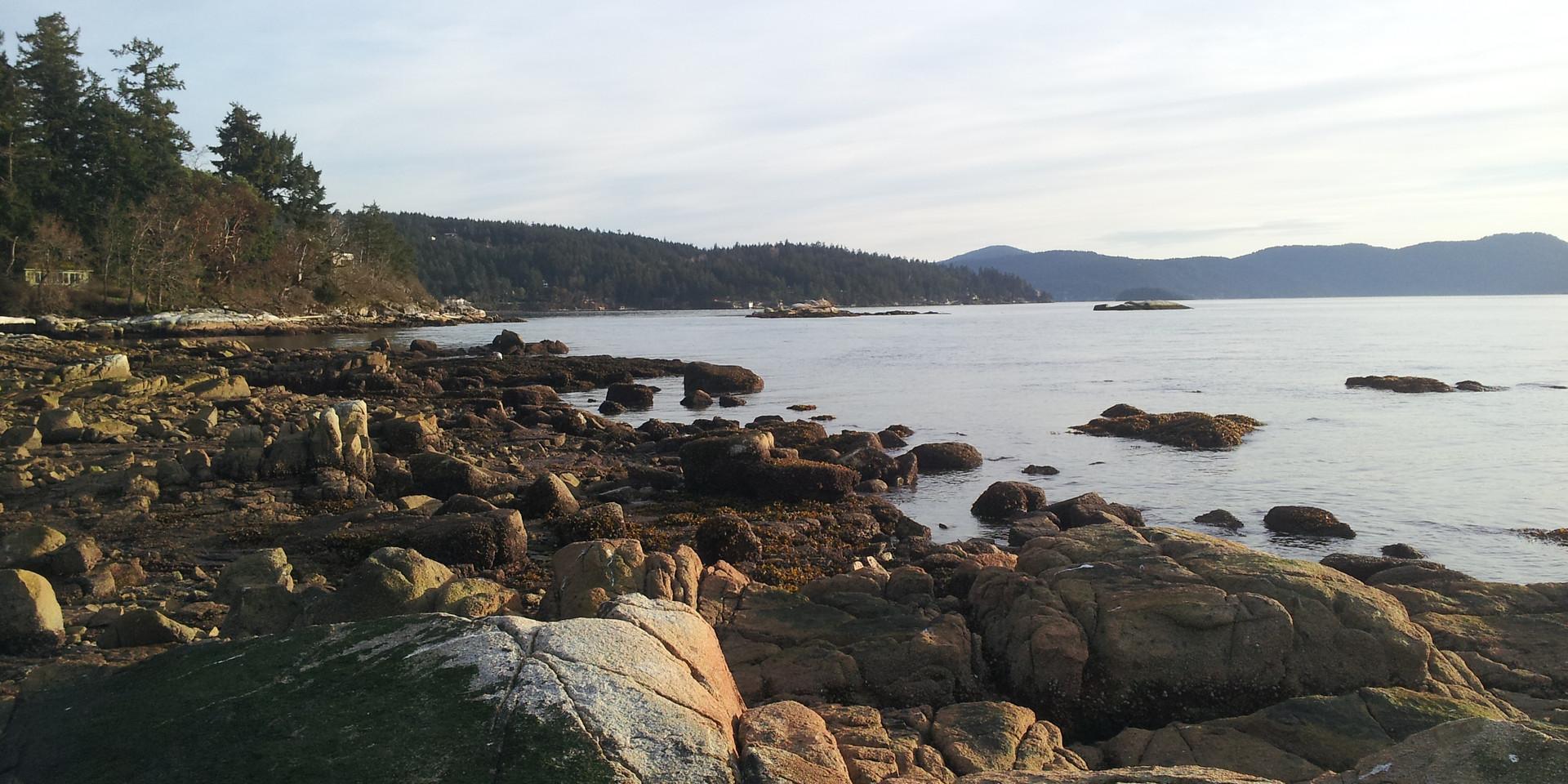 Saanich Peninsula coastline