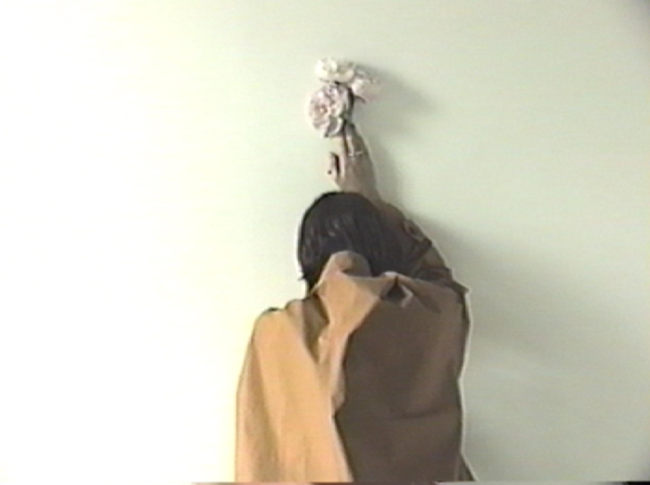 VHS Still
