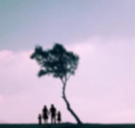 עץ 2.jpeg