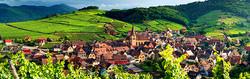 Alsace Şarap Yolu Turu