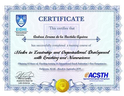 certificado 1.jpg
