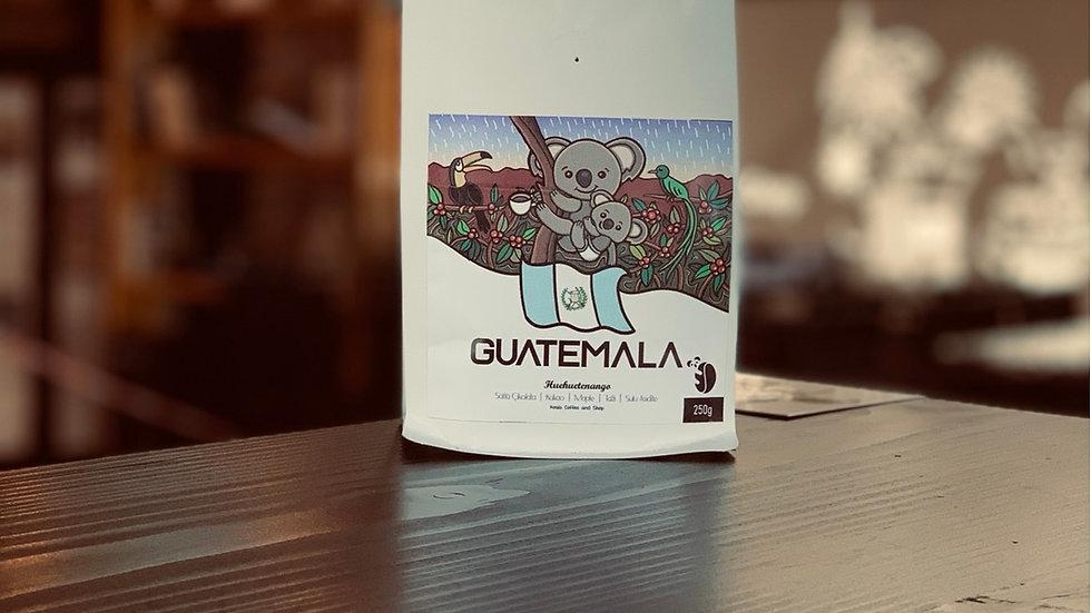 Koala Coffee-Guatemala Huehuetenango