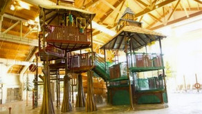 4-year-old girl was found with serious head trauma at the Great Wolf Lodge waterpark