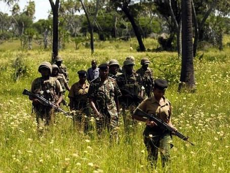 Kenya attack: Five suspects shot dead near Mpeketoni