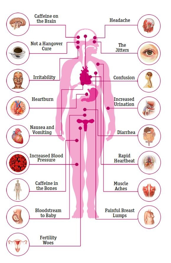 How caffeine impacts your entire body