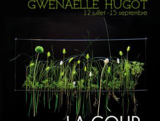 """Exposition """"Gwenaelle Hugot - Design Végétal"""" du 12 juillet au 15 septembre 2016"""