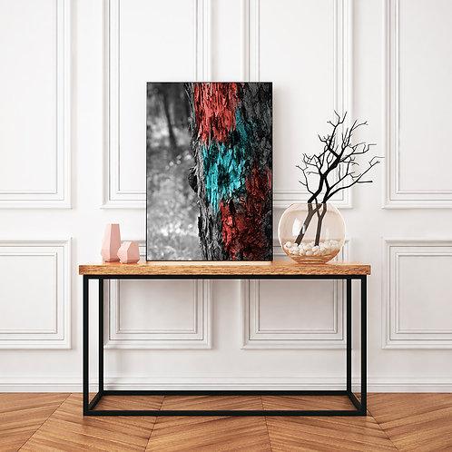 גזע עץ שחור לבן עם גווני אדום-תכלת