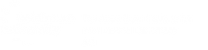 RU-AEI-logo-eng-white.png