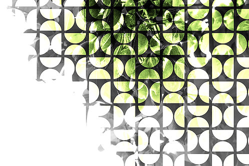 עלים וצורות גיאומטריות בגווני שחור-לבן-צהוב