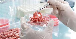 cell-based-meat-getty-images-istock.jpg