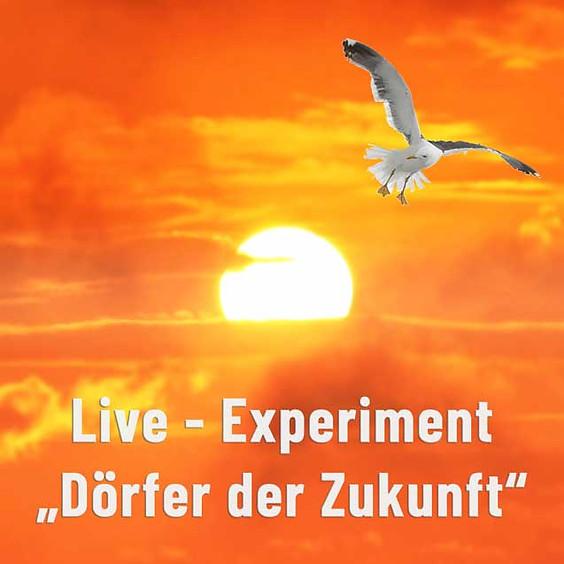 """Live-Workshop """"Frei Leben, gemeinsam Wirken und natürlich Lernen"""" (7)"""