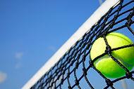 tennisball_net.jpg