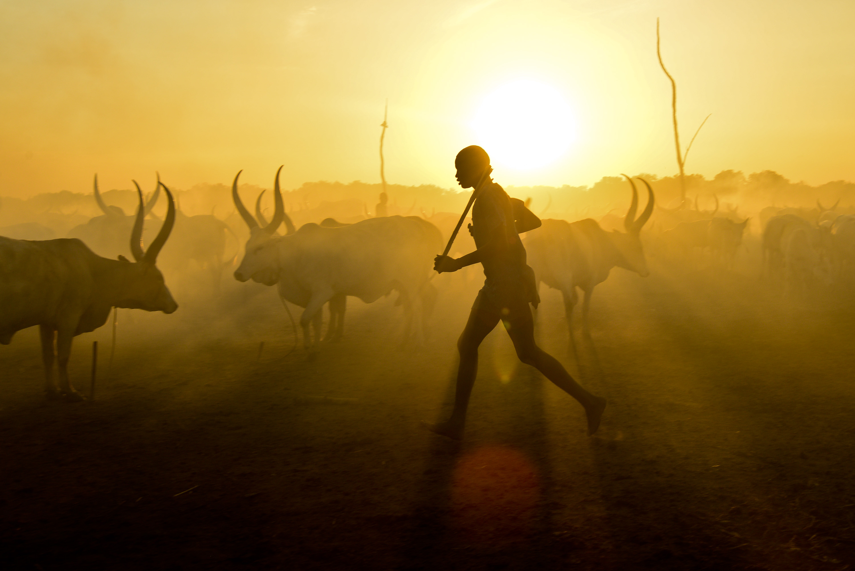Sunset in the Mundari cattle camp.