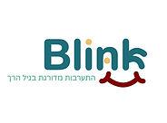 blink logo jpg.jpg