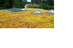 Green roofing, roofing membranes, butynol, eco-friendly roofing, environmental roofing, TPO