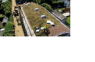 Green Roof, Roofing Membranes, TPO, Waterproofing, Butynol, tanking, eco-friendly roof, environmental roofing