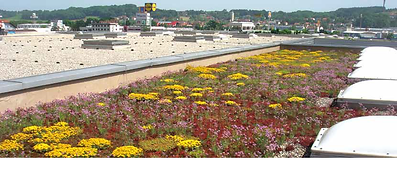 Green Roof, Roofing Membranes, Skylights, Butynol, Environmental Roofing, Eco-friendly roofing