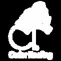 Cedar Roofing, Cedar Shakes, Cedar Shingles, Western Red Cedar, Cedar Australia, Cedar Queensland