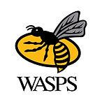 wasps-logo.jpg
