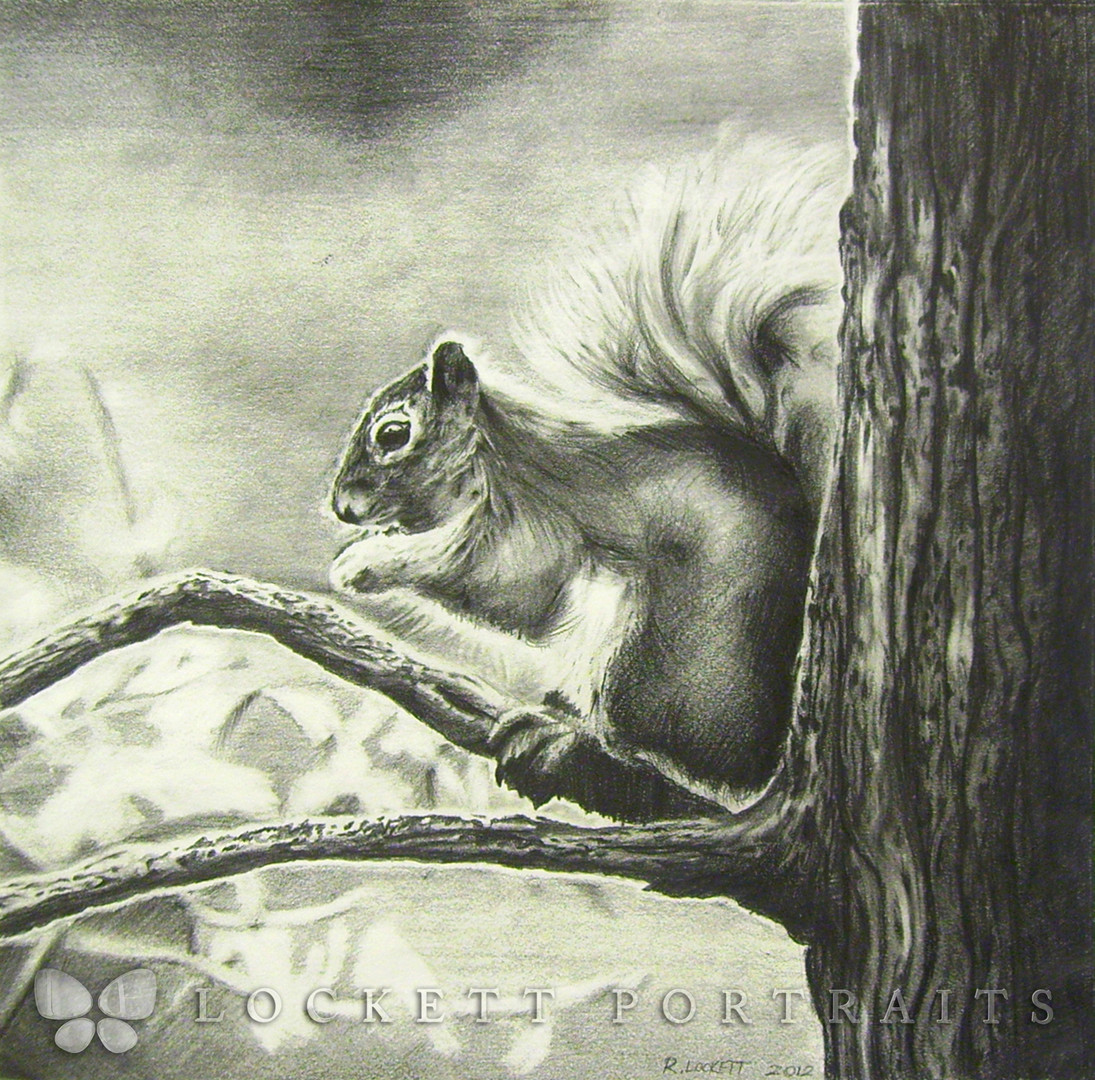 2012-12-16+-+Squirrel+-+PICT0123+ff+WM.j