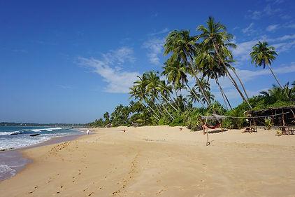 beach-2314336_1280.jpg