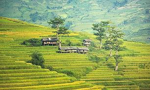 the-village-1822441_1280.jpg