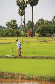 cambodia-2876862_1920.jpg