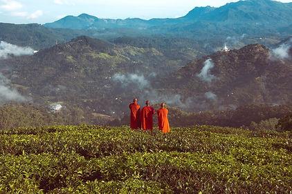 monks-5404722_1280.jpg
