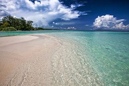 white-sand-beach-2252020_1280.jpg
