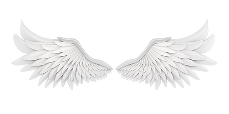 翼(背景処理).png