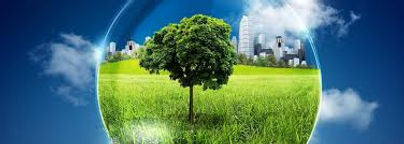 Environmental testing 3.jpg