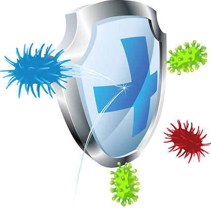 bacteria pic USE.jpg