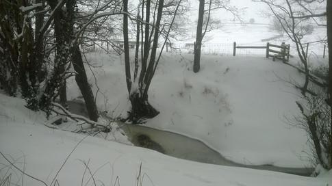 Winter in Netherwood