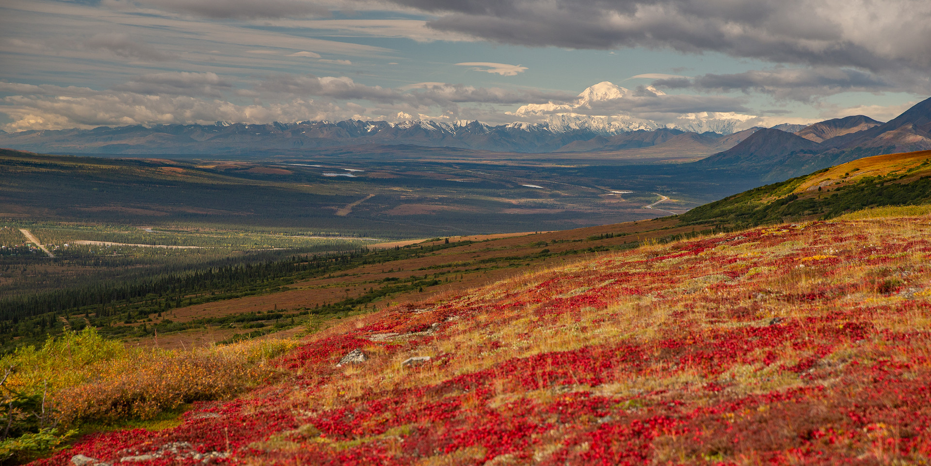 Denali in Fall